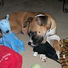 """I love ALL my toys!!"" by Linda Bennett"
