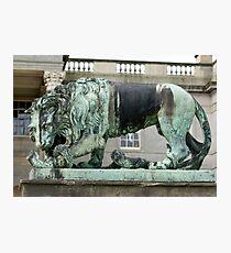 sculpture of lion, Wynyard Photographic Print