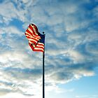 Blowing in the patriotic breeze by TAMMY DEVOLL