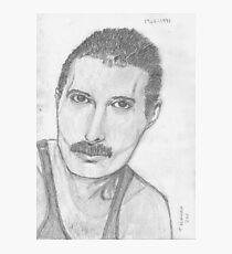 Freddie  Photographic Print