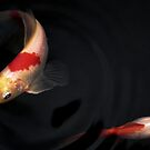 Koi fish #1 by Erika Gouws