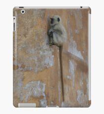 Hidden Indian Monkey iPad-Hülle & Klebefolie