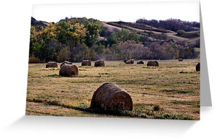 Fall In the Qu' Appelle Valley by Leslie van de Ligt