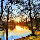 Stångån (Post River), Linköping, Sweden. Early Morning. by tiokvadrat