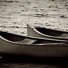 Two canoes by vasu