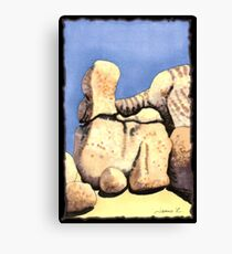 c9-Boulder Shapes Canvas Print