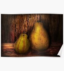 Autumn - Gourd - A pair of squash  Poster