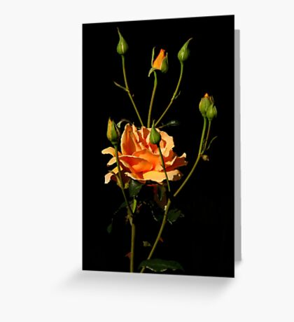 Roses Of Portland ~ Part Five Greeting Card