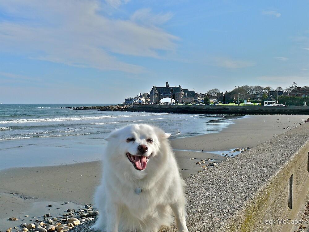 Last Great Beach Day - Sylvie At Narragansett Beach by Jack McCabe
