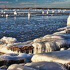 Icy Lake Eufaula, Oklahoma by Carolyn  Fletcher