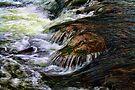 Mountain Fork River  Oklahoma by Carolyn  Fletcher