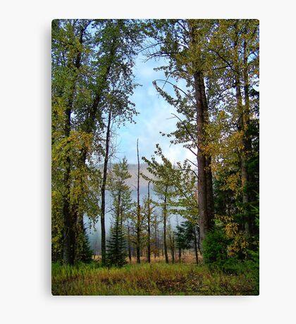 Autumn Morning Canvas Print