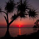 Last Sunset by Kym Howard