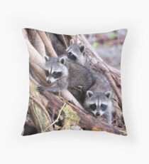 Baby Raccoons Throw Pillow
