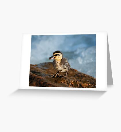 """""""This Little Duck"""" Greeting Card"""