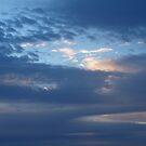 Morning Sky Brooms Head NSW  by Virginia McGowan