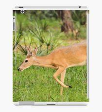 Young Buck (Odocoileus virginianus) iPad Case/Skin