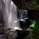 Lurking Behind the Falls by bazcelt
