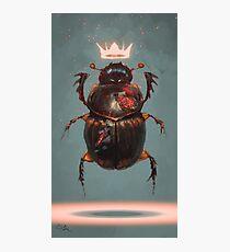Lámina fotográfica Escarabajo rey
