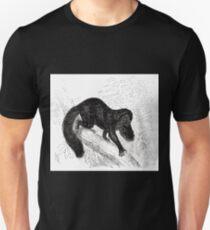 Robert Kretschmer Menniskans härledning och könsurvalet illustration sida II 205 Unisex T-Shirt
