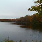 Cooks Pond by linmarie