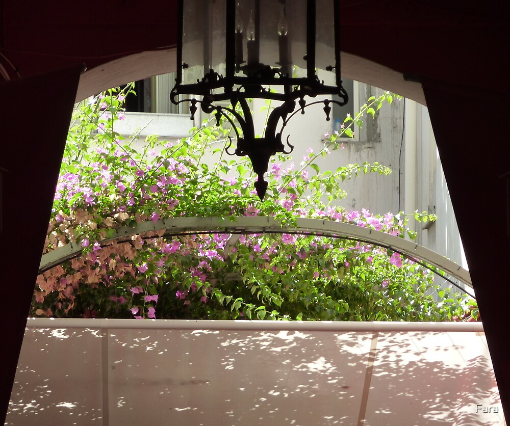 Enchanting Entrance by Fara