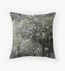 The Banksia Rose Throw Pillow