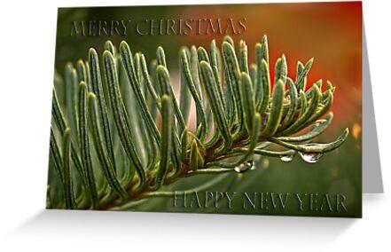 O Tannenbaum - card 2 by Celeste Mookherjee