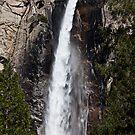 Bridalveil Fall Yosemite Valley by Garry Gay