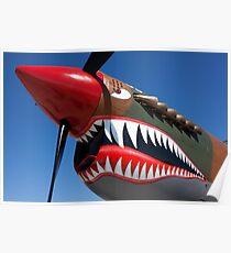 Flying tiger plane Poster