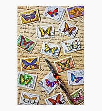 Butterfly stamps and old document Photographic Print