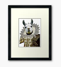 Drama Llama Framed Print