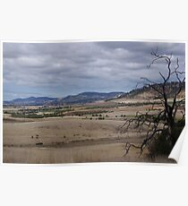 Zoo Plains - Wildlife Reserve Poster