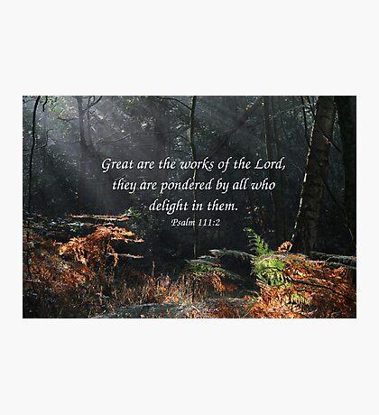 Psalm 111:2 Photographic Print