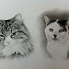 Adams cats by Peter Lawton