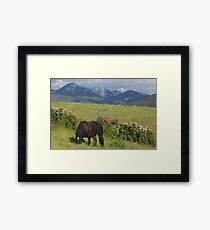Spring with Promise Framed Print
