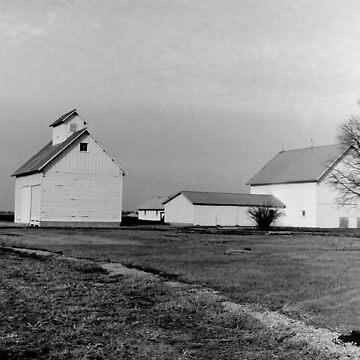 Central Illinois Farm by dirkbelling