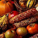 Autumn harvest  by Garry Gay