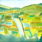 Taro Fields of Kauai by Sally Griffin