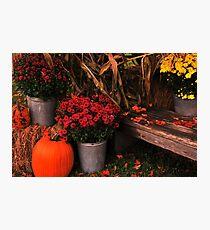 Autumn Welcome Photographic Print