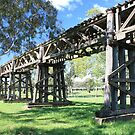 Railway Viaduct, Gundagai NSW by Tim Coleman
