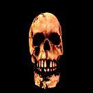 iSkull by SteveMG