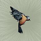 Scribbler Bird Iphone Case by Sarah  Mac Illustration