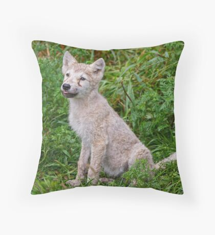 Ready for Obedience Training Throw Pillow