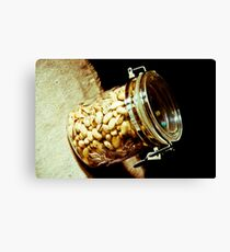 Nuts...: On feature work Canvas Print
