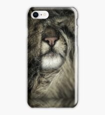 House Tiger I - portrait phone cover case sleeping relaxing tiny iPhone Case/Skin