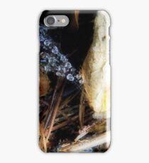 Autumn Glory iPhone Case/Skin
