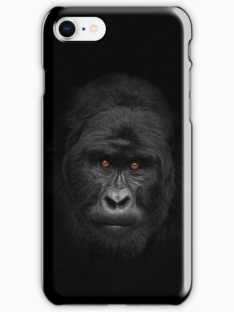 Why are they staring....iPhone case by Wojciech Dabrowski