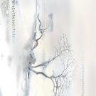 """""""Scots Pine"""", Fårösund, Gotland. iPhone case by Gréta Thórsdóttir"""