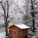 shed in winter by Sandra Hopko